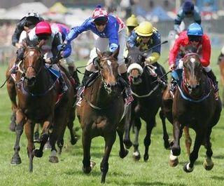 Horce race 2