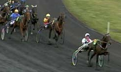 Course chevaux_m