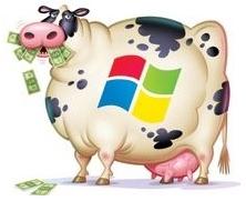 Windows vache à lait
