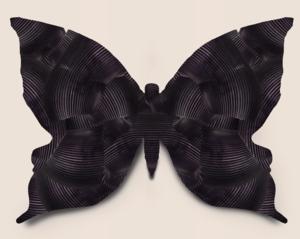 DPC papillon noir S 70571708