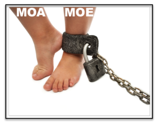 Tyrannie MOA:MOE