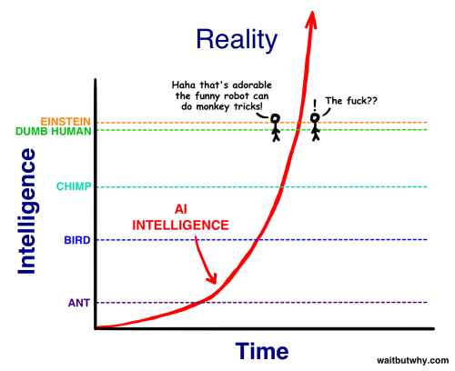 Reality view of Human Intelligence - copie