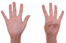 AdS DPC hands with 9 fingers S 95792846