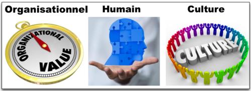 3 à régler - Organisation Culture humain