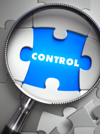 AdS DPC Control Puzzle S 81188889