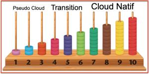Echelle 10 niveaux Pseudo Natif Cloud