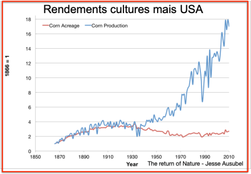 Rendements Mais USA
