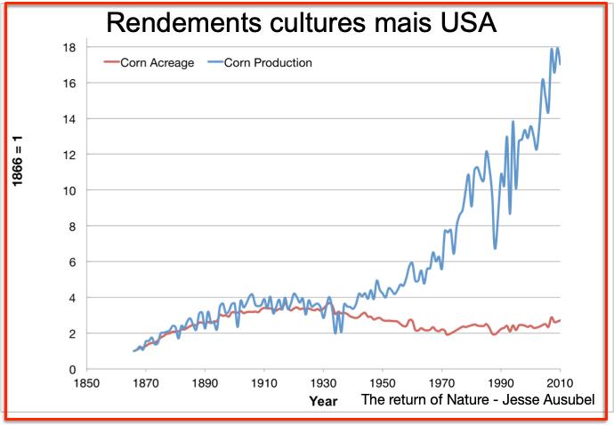 Rendements Mais USA