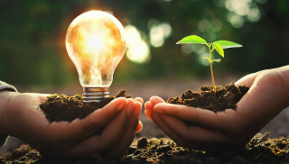 AdS DPC Light bulb & tree green SS 227727671