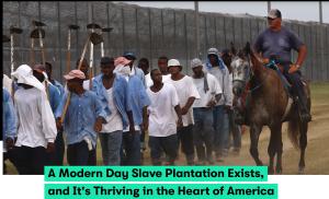 Amercican Slaves in Jail