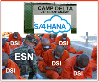 SAP:4HANA Guantanamo