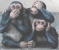 Three_monkeys_2_2