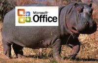 Hippo_office_2006
