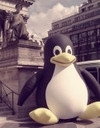Pinguin_paris_1